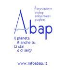 abap per borse 38X41 2013 completo(1)
